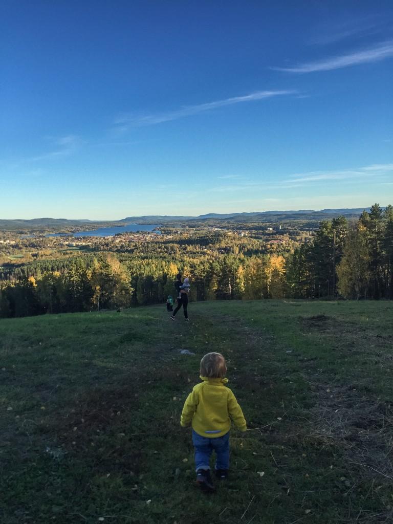 """Skön nerförsbacke från toppen, här en bild från dagen innan på """"lilla berget"""""""